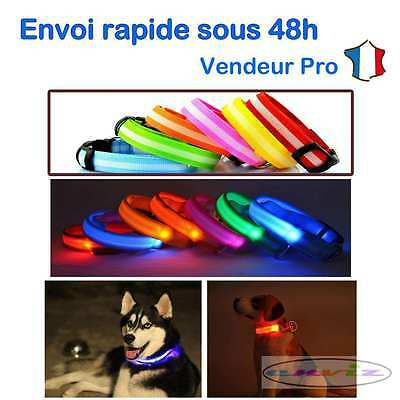 Collier chien LED lumineux clignotant protection animal réglable