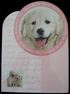 Vintage Mother's Day Greeting Card Chrome Die Cut Golden Lab Puppies U.K. Card.
