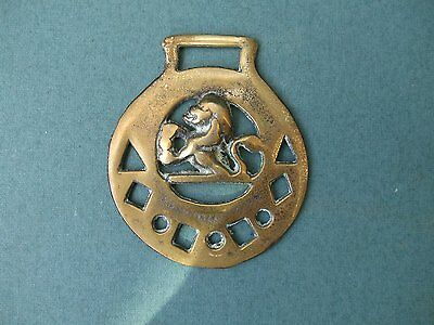 Traditional Style Horse Brass Featuring A Lion