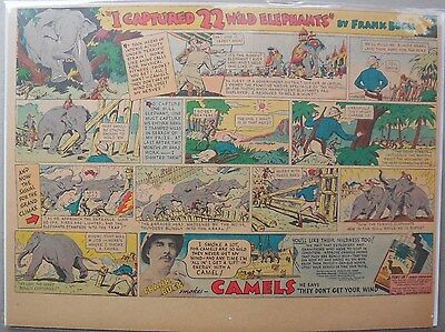 Camel Cigarette Ad: Frank Buck Captures Wild Elephants Half or Tabloid Page