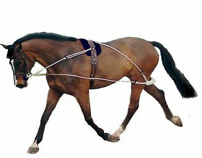 Pessoa style training aid (4 sizes all adjustable) with instructions