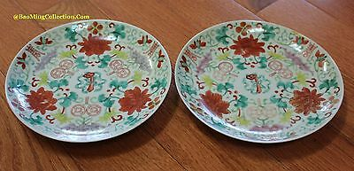 Beautiful Pair of Qing Dynasty Daoguang Period Famille Rose Plates Dishes