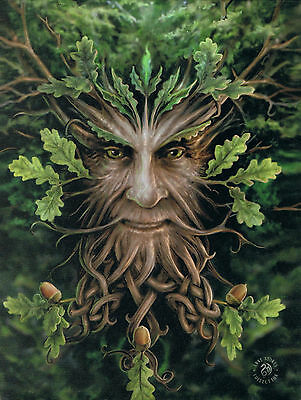 NEW Oak King Wall Plaque Picture by Anne Stokes 25cm x 19cm Greenman Fantasy