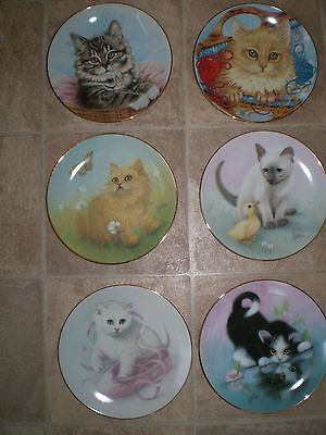 Hamilton Plate Collection  Cats and Kittens plates