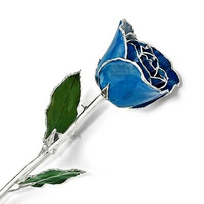"""BLUE ROSE Trimmed in Silver Lacquered Rose Long Stem Rose 12"""" Gift Box"""