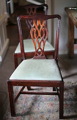 6 Lovely Mahogany Chippendale Chairs 1950's