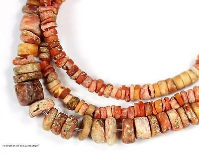 17) 19 Inch. of Ancient Pre Columbian Orange Spondyllus Shell Beads Artifact