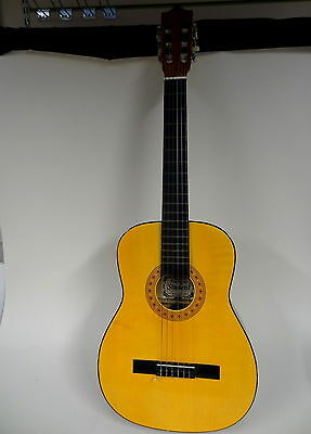HOHNER Leyandi Student Acoustic Guitar with Case ¾ Size Fully Strung