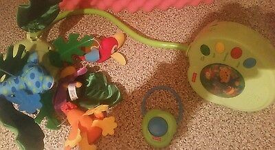 Fisher-Price Baby Rainforest Peek-A-Boo Musical Mobile