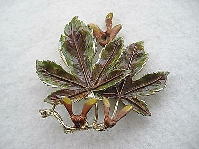 Lovely Signed Vintage Exquisite Tree & Fruit Brooch - Sycamore