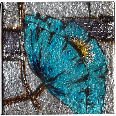 Set of 4 Square Glass Drinks Coasters - Blue Poppy Design
