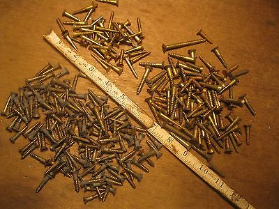 lot antique brass wood screws vintage standard slot flat head shop tool hardware