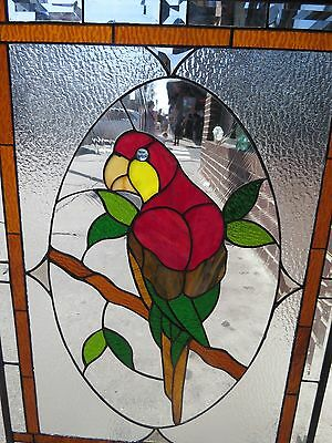 Stained Glass Window - Parrot   Leaded Windows Hand Made