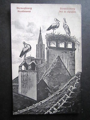 France. Strassburg. Storks On Chimneys. Unposted.