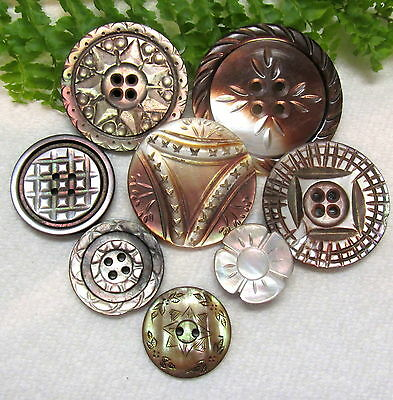 Gorgeous Lot Of Victorian Carved Pearl Buttons Q33