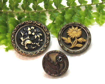 3 Victorian Celluloid Buttons W/ Metal Overlay~1 With Cut Steel Q62
