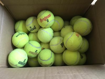 Tennis Balls Fifty (50) Used for Tennis Only CLEAN VGC to EUC Various Brands