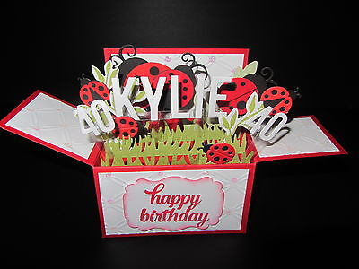 Handmade card, 3D birthday Card in a box -Ladybirds (bugs), PERSONALISED