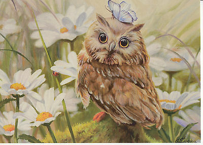 2015 camomiles owl butterfly modern Russian  card