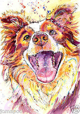 BORDER COLLIE PRINT of Original Watercolour DOG PUP Painting Art by JOSIE P