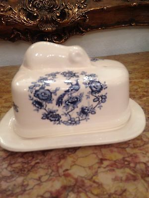 Victorian Bassware Blue And White Pottery Cheese Dish