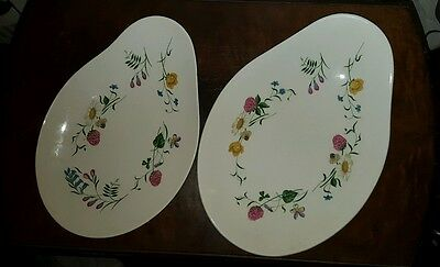 Royal Staffordshire Clarice Cliff Wild Beauty Oval Serving Dish/Plate   (pt8)