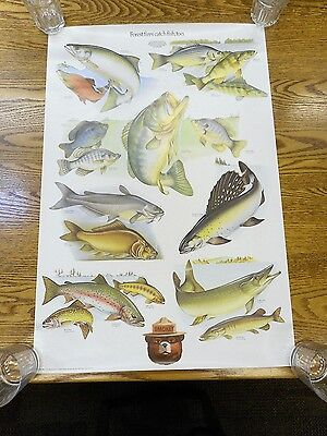 Vintage Smokey the Bear Poster Fish US Dept of Agriculture Forest Fires