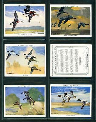 6 x WILDFOWL (LARGE) – PLAYERS – 1937