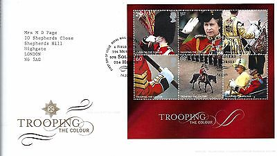 "2005 (2) Trooping The Colour M-Sheet ""with Bureau"" Hand Stamp Priced To Sell @."