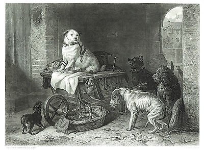 """Jack in Office"" - Eng. by C.G. Lewis after Sir Edwin Landseer - 1833 -11""x14"""