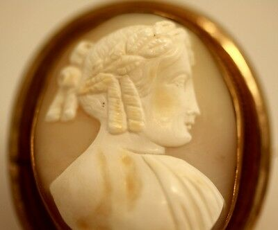 Antique Georgian hand carved shell cameo Ceres greek roman brooch Pin high relie