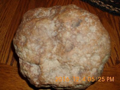 ONE LARGE NOBBY NATURAL KENTUCKY GEODE (non-rattler) 12 3/4 lbs.