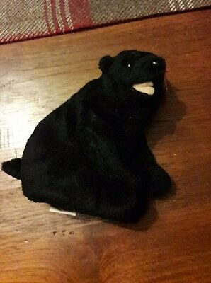 ty Beanie Babies Collection - Cinders - Black Bear
