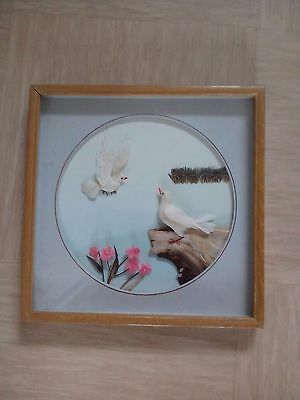 vintage shadow box 3D feather collage picture doves