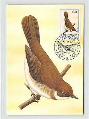 S. TOME MK 1983 VÖGEL PRINCIPE-DROßLING BIRDS CARTE MAXIMUM CARD MC CM m290/
