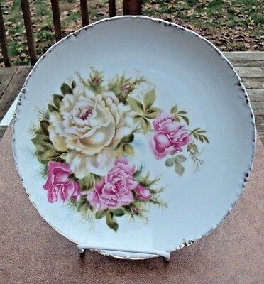 C. 1900+ Antique Rosenthal Bavaria Porcelain Plate beautiful  colored roses