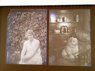 Orig GLASS NEGATIVE X 5 SOCIAL HISTORY GIRL DOG PUPPIES 1920s 30s