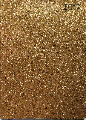 2017 Gold  Sparkle  Pocket Diary  Week To View
