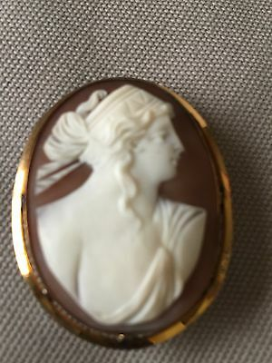 Vintage Shell Cameo Pin Pendant Yellow Gold Filled Frame