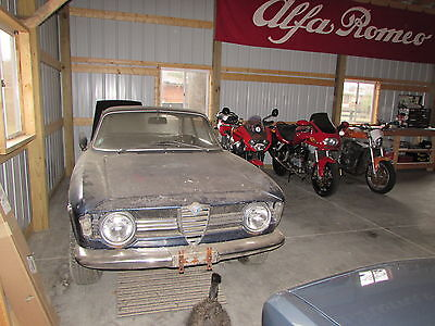 1967 Alfa Romeo GTV Giulia Sprint GT 1967 Step Nose needs a new home, she's rusty but worth restoring