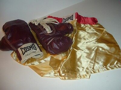 Vintage Cosmos Childs Boxing Shorts and Gloves