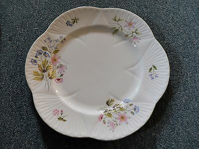 Shelley Wild Anemones Set of 9 Dinner Plates