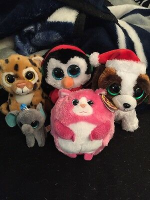 Lot Of 5 Ty Big Eye Beanies. Peanut, Freckles, North, Presents, And Tumbles.