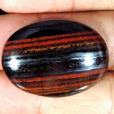 BRILLIANT! 29.80Cts. NATURAL DESIGNER  IRON TIGER OVAL CABOCHON AFRICA  GEMSTONE