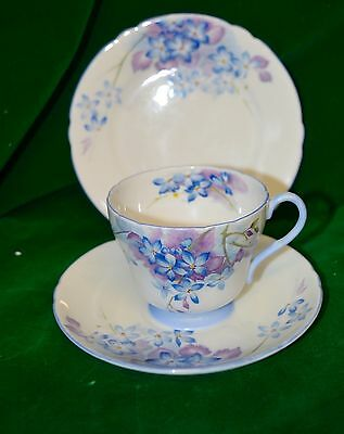 Extremely Rare Stunning Vintage Shelley Blue Spray Trio Cup & Saucer Plate 13634