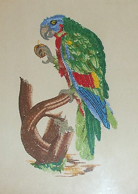finished needlepoint artwork, very fine stitching, embroidery, PARROT