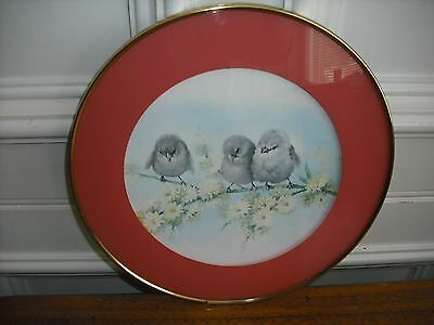 1960s  SALMON PINK RIMMED FRAMED CUTE  BABY BIRDS ON A BRANCH