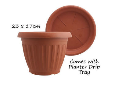 12 garden plant pot round with saucer diameter 23cm 17cm terracotta bulk wholesa