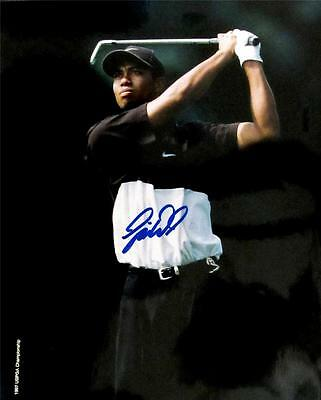 Tiger Wood Signed 8 x 10 Color Photo Very Collectable RARE