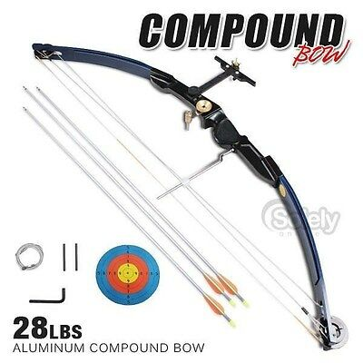 New! 28lbs Adult Compound Bow Archery Shooting Aluminium Handle 3 Arrows Hunting